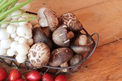 Mushrooms and vegetables on wood background. Royalty Free Stock Image