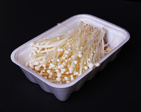 Mushrooms in white container over black background, enoki Royalty Free Stock Photography