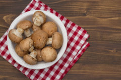Mushrooms in white plate on brown background Stock Image