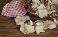 Mushrooms in wicker basket Stock Images