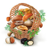 Mushrooms in a wicker basket Stock Images
