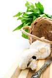 Mushrooms in wicker basket,greens and knife Stock Images