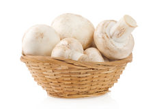 Mushrooms in wicker basket isolated on white Stock Images