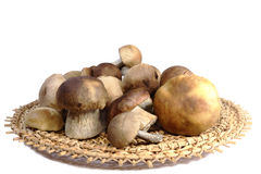 Mushrooms in a wicker basket on a white background. Royalty Free Stock Photos