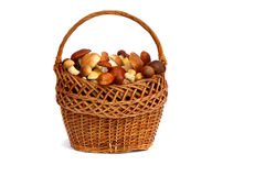 Mushrooms in a wicker basket on a white background. Stock Image