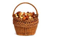 Mushrooms in a wicker basket on a white background. Strong white mushrooms in a wicker basket. Presented on a white background Stock Image