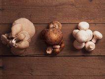 Mushrooms on wooden background Stock Images