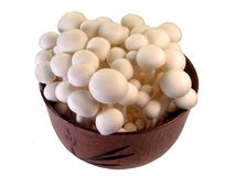 Mushrooms in a wooden bowl Royalty Free Stock Photos