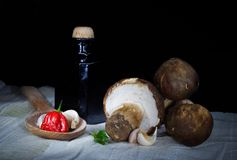 Mushroomsp de Porcini Fotos de archivo