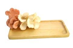 Mushroon Stock Foto's