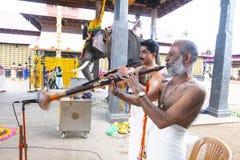 Musian och elefanten är i templet på Kerala, Indien royaltyfri fotografi