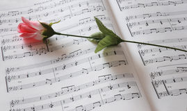Music abd flower. Sheet of music and rose Stock Photo