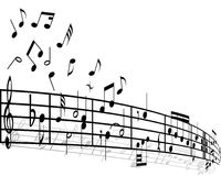 Music background. With different notes on the white Royalty Free Stock Images