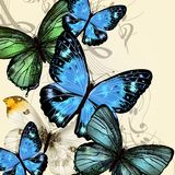 Music background with detailed vector butterflies Stock Photography