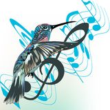 Music background with notes Royalty Free Stock Image