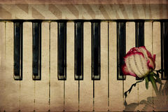 Music background with rose. Abstract grunge rose and piano, vintage music background Stock Photos