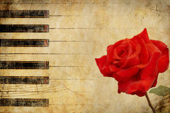 Music background with rose Stock Image