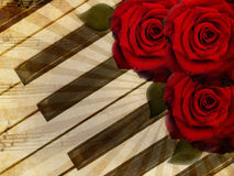 Music background with roses Stock Images