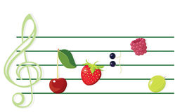 Music of berries. Illustration of tasty berries as musical notes. Vector/eps8 Royalty Free Stock Image