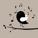 Music bird Stock Photography