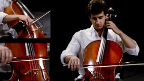Music for cello stock video footage