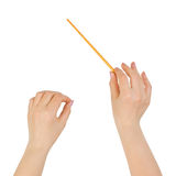 Music conductor hands. Isolated on white background Stock Photography
