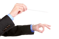 Music conductor hands with baton. Over the white Royalty Free Stock Photography