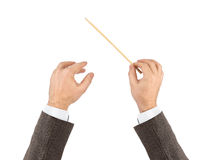 Music conductor hands. Isolated on white background Stock Images