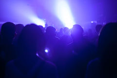 Music crowd silhouette in music festival Royalty Free Stock Image