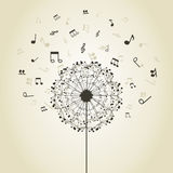 Music a dandelion Royalty Free Stock Image
