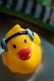 Music duck Stock Photos