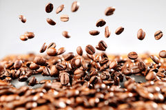 Music explosion of coffee beans, concept stock images