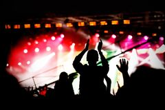 Free Music Fan Enjoying Night Perfomance Of Famous Artist On Stage Royalty Free Stock Images - 172525119