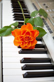 Music and flower. Electronic piano with orange rose flower Stock Photos