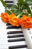 Music and flower. Electronic piano with orange rose flower Royalty Free Stock Photos