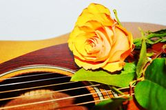 Music and flowers, symbols. Beautiful yellow rose on the strings of a guitar, suggesting love songs royalty free stock photo
