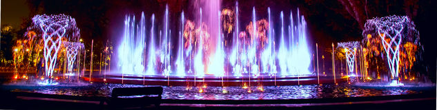 Music fountain Margaret Island. Music fountain at the Margaret Island in Budapest Hungary with night illumination banner Royalty Free Stock Photography