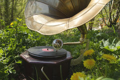 Music in the garden Stock Image