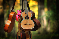 Music guitar Royalty Free Stock Images