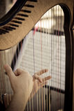 Music with harp at the wedding. Music playing using a harp at a wedding. Photo treated with duo tone Royalty Free Stock Photography