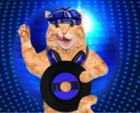 Music headphone vinyl record cat. Stock Photography