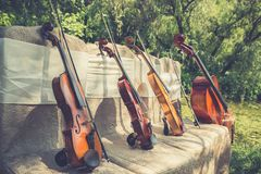 Music instruments in nature royalty free stock image