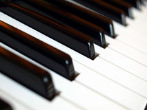 Music keyboard. Detail of black and white keys on music keyboard - selective focus royalty free stock photo