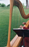 Music on the lawn. Music being played on the lawn at a wedding Royalty Free Stock Image