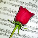 The music of love Royalty Free Stock Photos