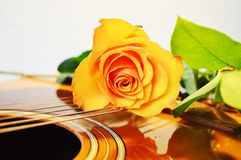 Music and love, symbols. Beautiful yellow rose on the strings of a guitar, suggesting the beauty of love royalty free stock images