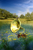 Music and nature. A gramophone among flowers,  in the middle of a field, with a bird resting on it Stock Photo