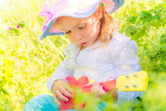 Music nature Stock Images