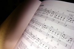 Free Music Notes Royalty Free Stock Photos - 873218