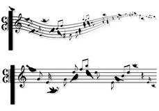 Music notes with birds, vector. Music notes with singing birds, vector background Stock Photos